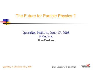 The Future for Particle Physics ?
