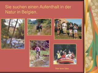Sie suchen einen Aufenthalt in der Natur in Belgien.