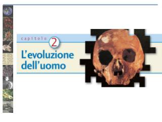 Homo sapiens : una specie unica?