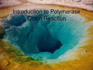 Introduction to Polymerase Chain Reaction