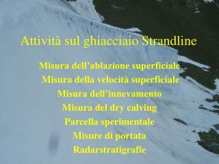 Attività sul ghiacciaio Strandline
