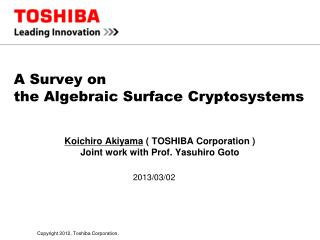 A Survey on  the Algebraic Surface Cryptosystems