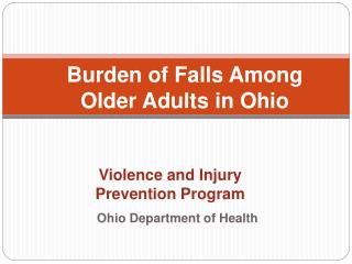 Violence and Injury  Prevention Program