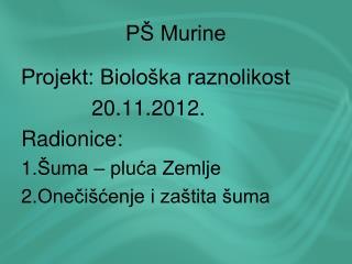PŠ Murine