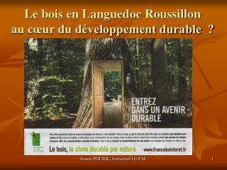 Le bois en Languedoc Roussillon  au c�ur du d�veloppement durable  ?