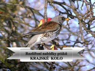 Rozšíření nabídky ptáků KRAJSKÉ  KOLO