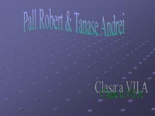 Pall Robert & Tanase Andrei