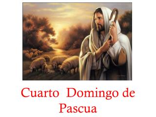 Cuarto  Domingo de Pascua
