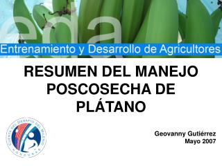 Cosecha y Manejo Postcosecha del Cultivo del Pl tano