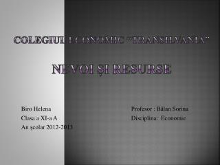 """Colegiul Economic """"transilvania"""" Nevoi și resurse"""