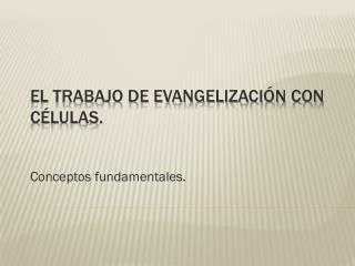 El trabajo de evangelización con células.