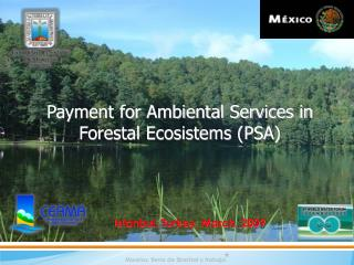 Payment for Ambiental Services in Forestal Ecosistems (PSA)