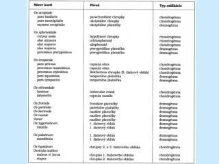 P oruchy vývinu a vrodené chyby