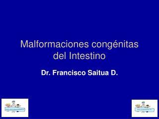 Malformaciones congénitas del Intestino