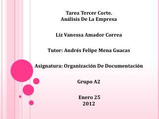 Tarea Tercer Corte. An á lisis De La Empresa   Liz Vanessa Amador Correa