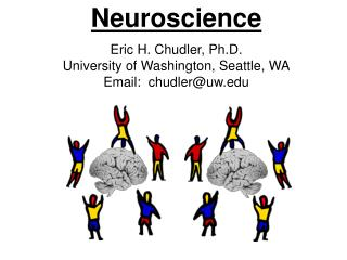 Neuroscience Eric H. Chudler, Ph.D. University of Washington, Seattle, WA Email:  chudler@uw