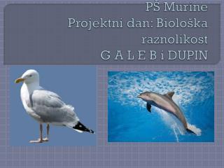 PŠ Murine Projektni dan: Biološka raznolikost G A L E B i DUPIN