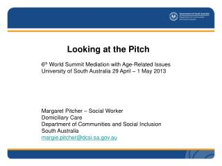 Looking at the Pitch 6 th  World Summit Mediation with Age-Related Issues