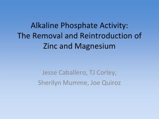 Alkaline Phosphate Activity: The Removal and Reintroduction of Zinc and Magnesium