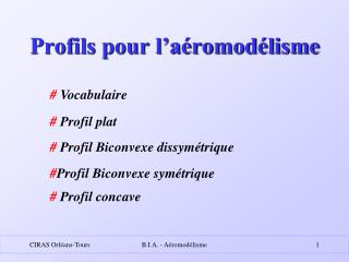 Profils pour l�a�romod�lisme