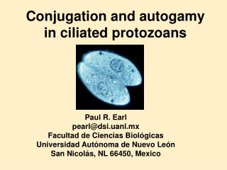 Conjugation and autogamy  in ciliated protozoans