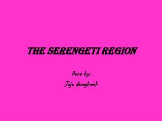 The Serengeti Region