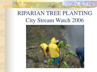RIPARIAN TREE PLANTING    City Stream Watch 2006