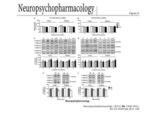 Neuropsychopharmacology  (2011)  36,  2406-2421; doi:10.1038/npp.2011.128