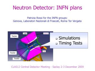 Neutron Detector: INFN plans