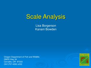 Scale Analysis Lisa Borgerson Kanani Bowden