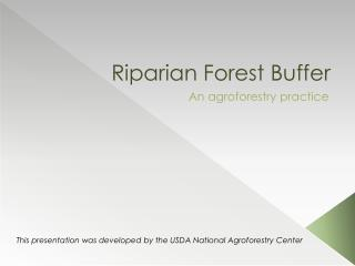 Riparian Forest Buffer