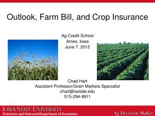 Outlook, Farm Bill, and Crop Insurance