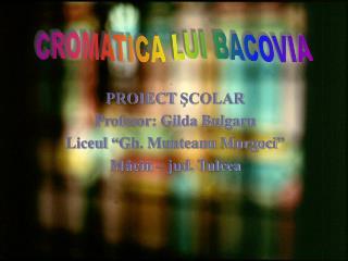 """PROIECT  ŞCOLAR Profesor: Gilda Bulgaru Liceul """"Gh. Munteanu Murgoci"""" Măcin – jud. Tulcea"""
