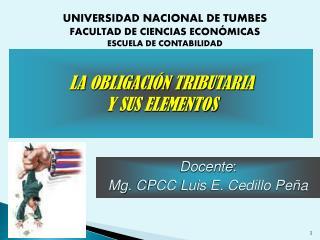 Docente : Mg.  CPCC Luis E. Cedillo Peña