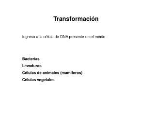 Transformaci ón