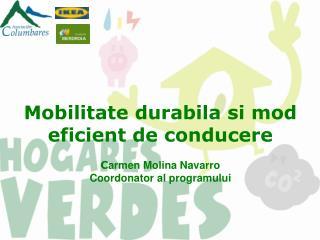 Ce este programul Hogares Verdes?