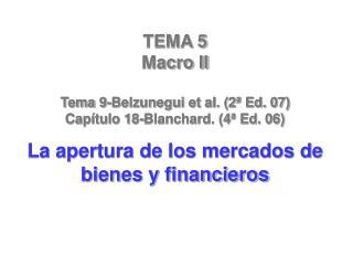 TEMA 5  Macro II Tema 9-Belzunegui et al. (2ª Ed. 07) Capítulo 18-Blanchard. (4ª Ed. 06)