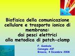 Elettricit  ed elettrofisiologia dal settecento ai giorni nostri            dall organismo alla struttura molecolare dei