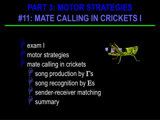 exam I  motor strategies   mate calling in crickets  song production by   s
