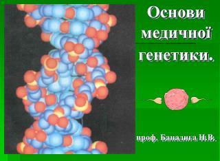 Основи медичної генетики . проф. Банадига Н.В.