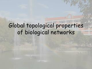 Global topological properties of biological networks