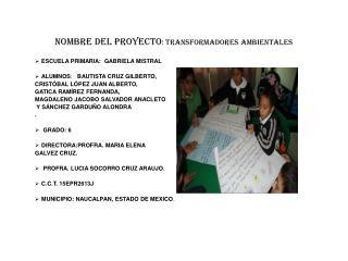 Nombre del proyecto : TRANSFORMADORES AMBIENTALES