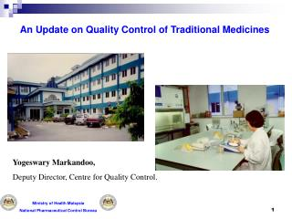 An Update on Quality Control of Traditional Medicines