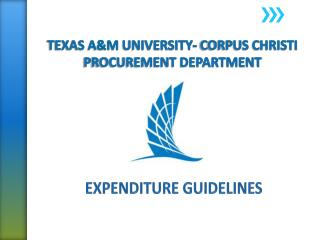 TEXAS  A&M  UNIVERSITY- CORPUS CHRISTI PROCUREMENT DEPARTMENT