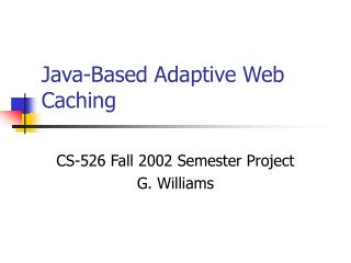 Java-Based Adaptive Web Caching