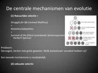 De  centrale mechanismen  van  evolutie