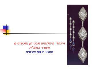 """מינהל  היהלומים אבני חן ותכשיטים משרד התמ""""ת תעשיית התכשיטים"""