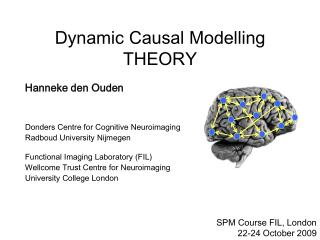 Dynamic Causal Modelling THEORY