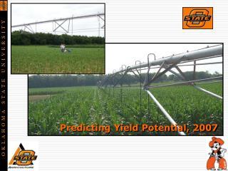 Predicting Yield Potential, 2007