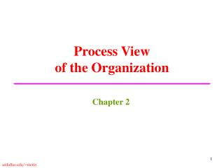 Process View  of the Organization